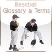 Baseball Glossary and Terms